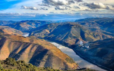 Douro valley benefits from growing popularity of Porto as a tourist and events destination